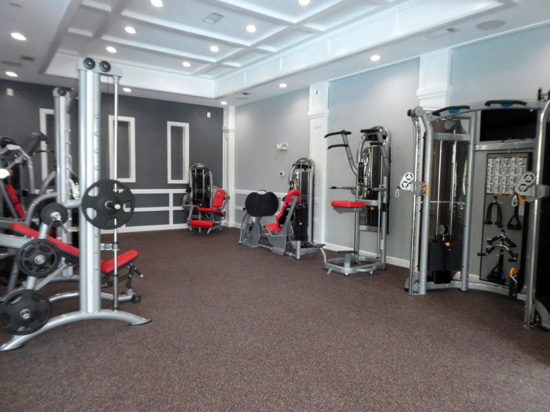 This image shows an expansive view of the fitness gym equipment for strength and chest workout.